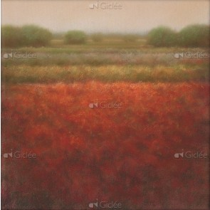 Hans Dolieslager - Rood veld
